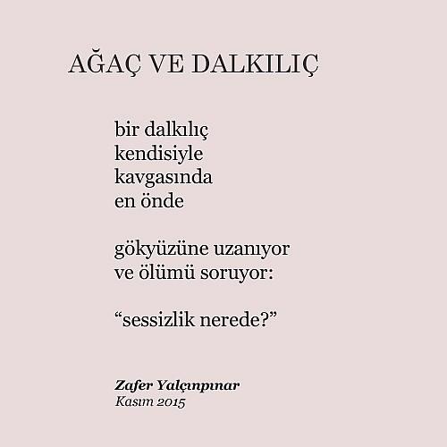 dalkilic