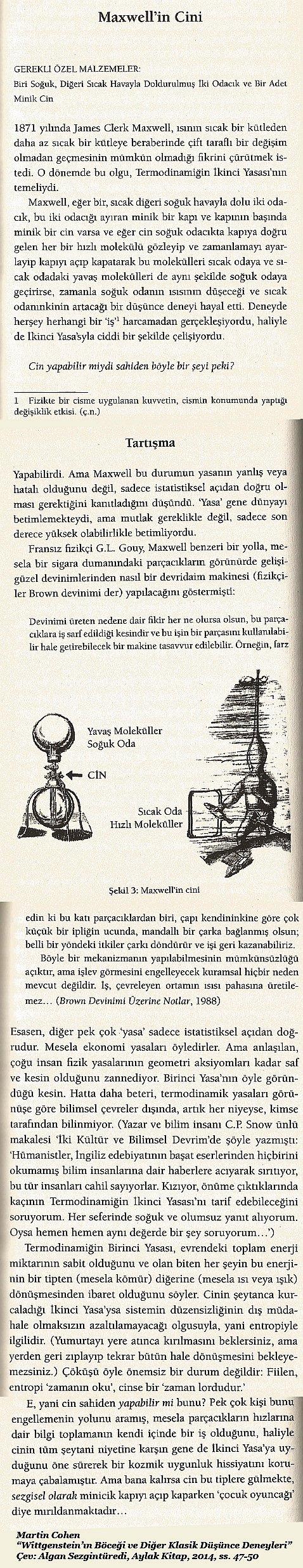 maxwellcini